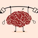 wat-is-nlp-brein
