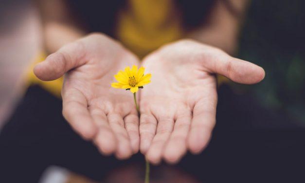 Leren Vergeven: Hoe vergeef je iemand? 16 Tips, Betekenis & Oefeningen