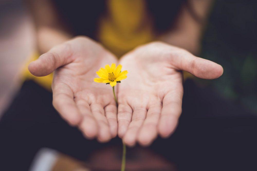 leren vergeven tips