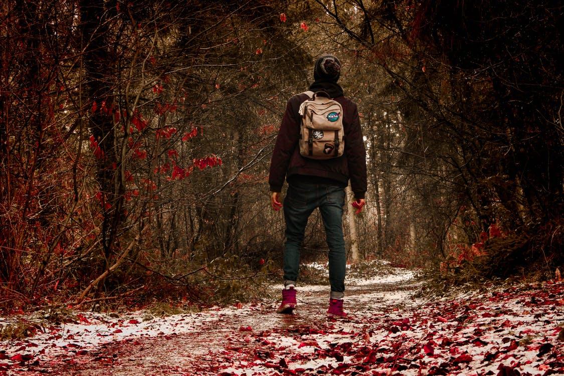 natuur wandeling mindful