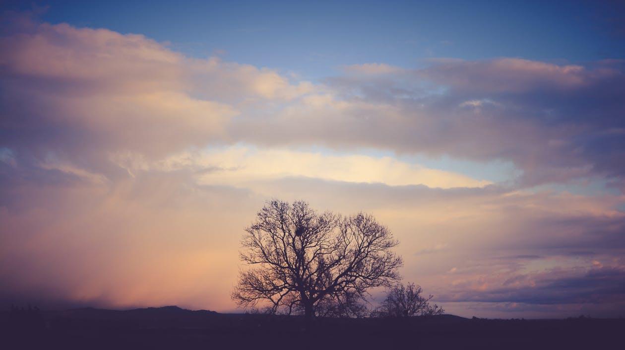 bewustzijn en innerlijke vrede
