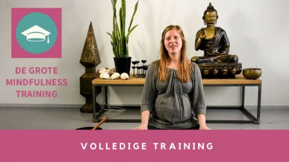 de-grote-mindfulness-training-preview