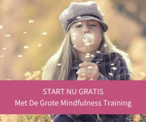 start-gratis-met-de-grote-mindfulness-training