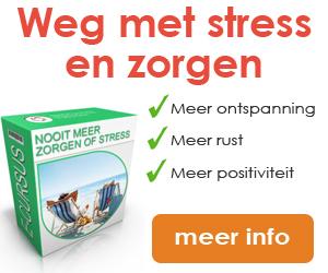 Newstart-Banner-Cursus-Nooit-meer-Zorgen-of-Stress-300-x-250