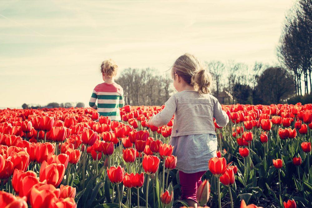 Eerlijkheid tonen: betekenis en uitleg (tips en voorbeelden)