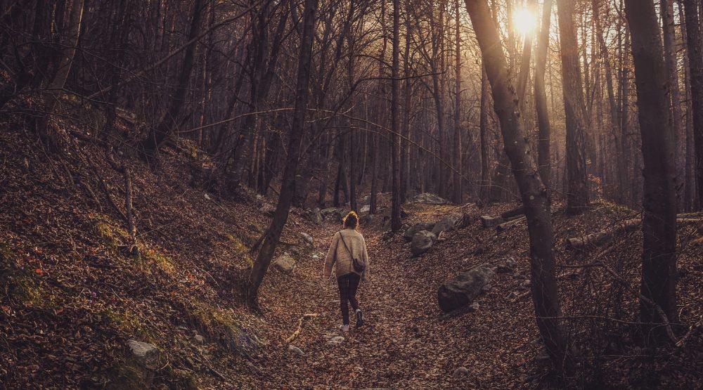 wandelen in de natuur mindfulness