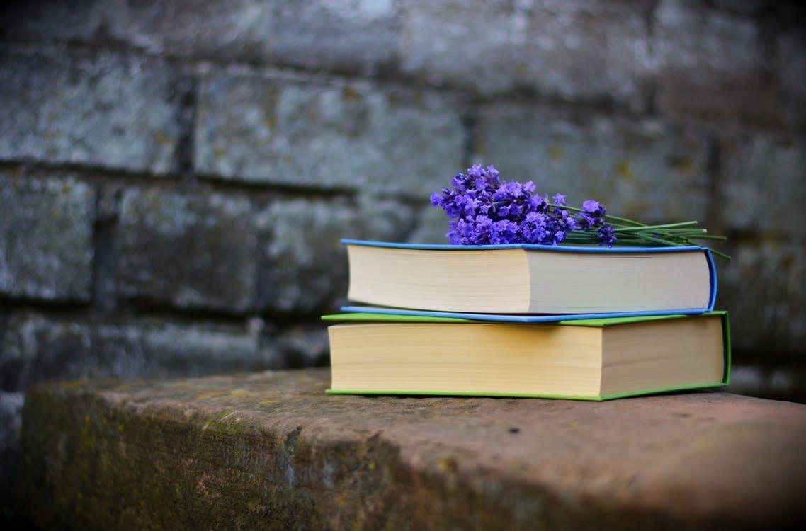 Beste Filosofische Boeken Top 10 [Update 2020]