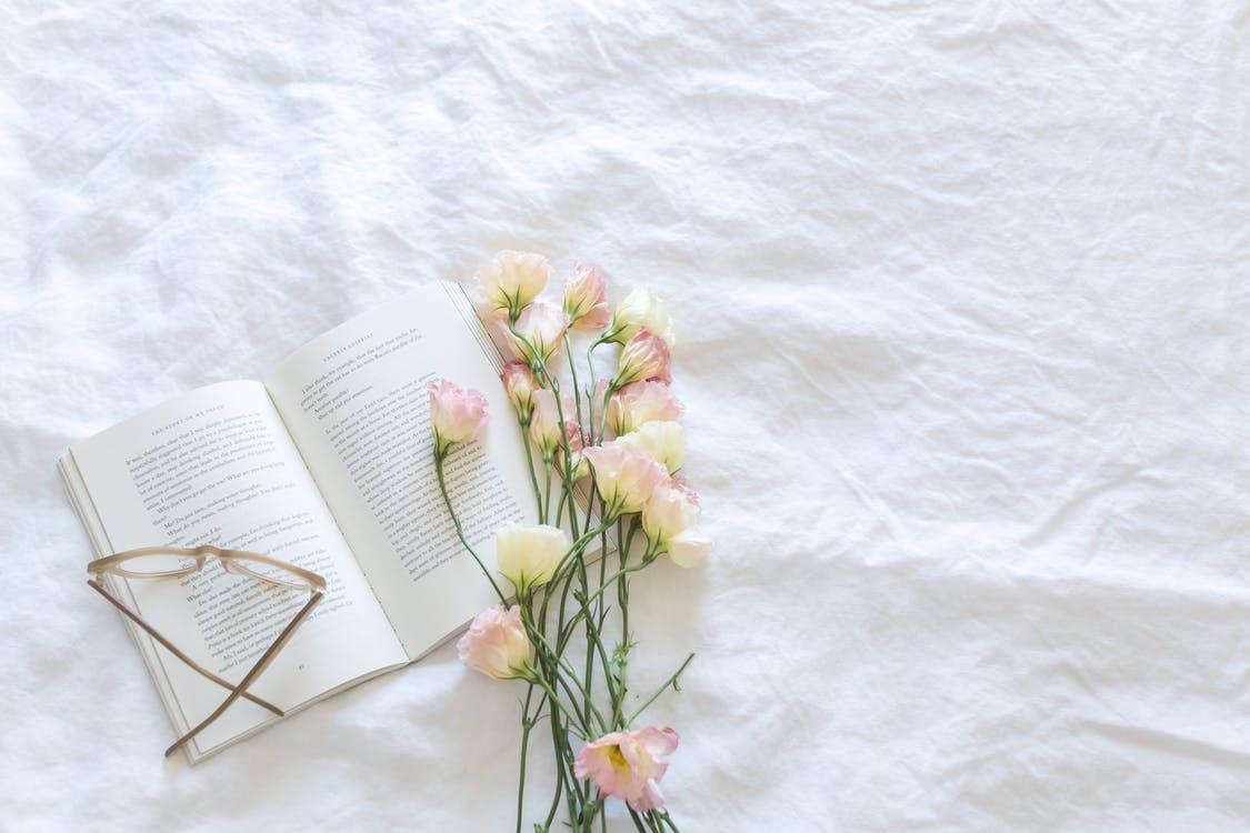 Beste Opvoedboeken: Top 10 Over Opvoeding [Update 2020]