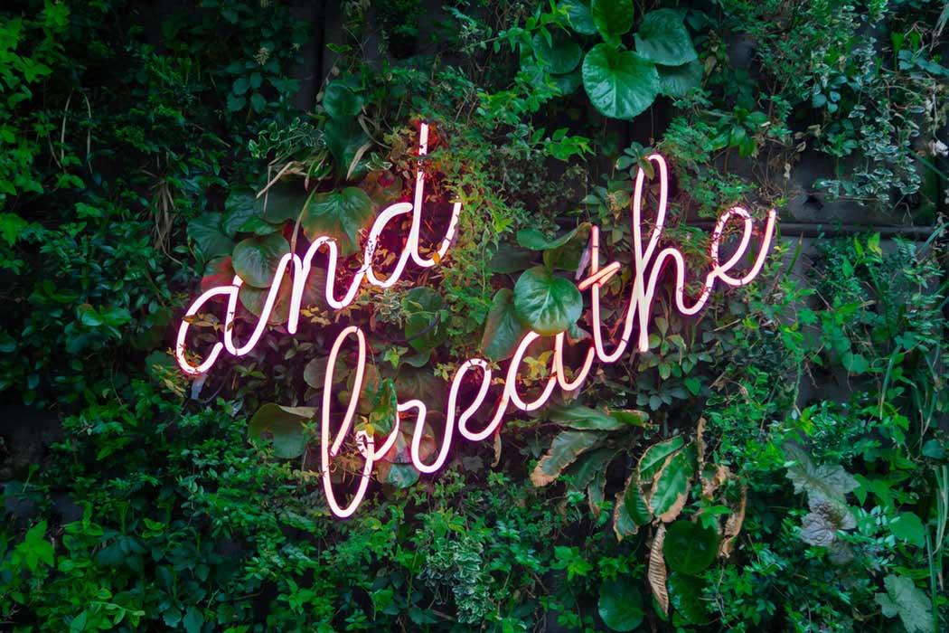 gewoontes veranderen met meditatie