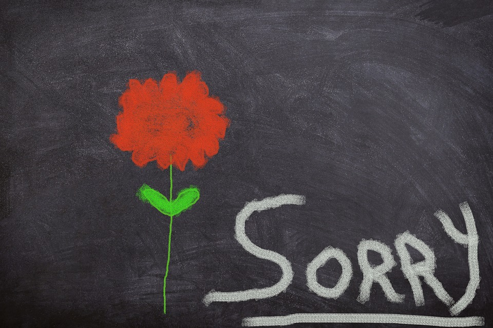 pleaser zegt sorry