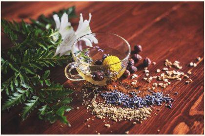 homeopathie betekenis