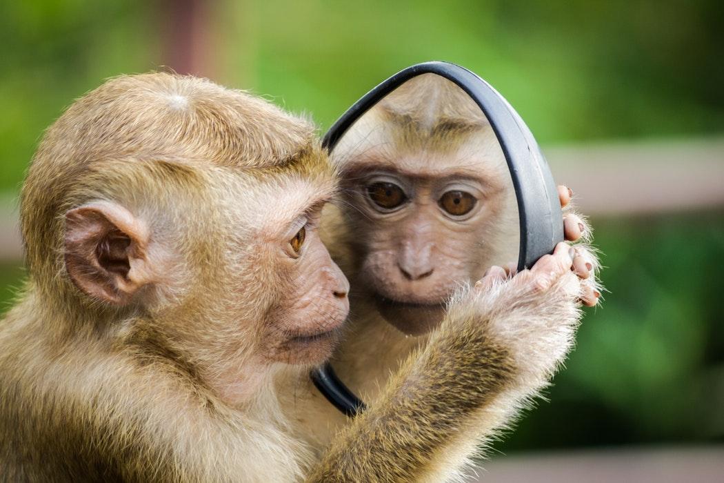 kijk eens in de spiegel voor communicatie