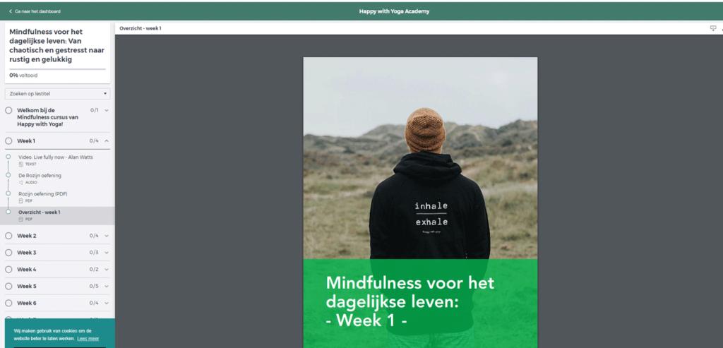 onze ervaring met mindfulness voor het dagelijks leven