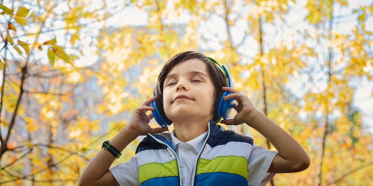 Mindfulness Audiobestanden [Mp3 Meditaties Downloaden & Direct Luisteren]